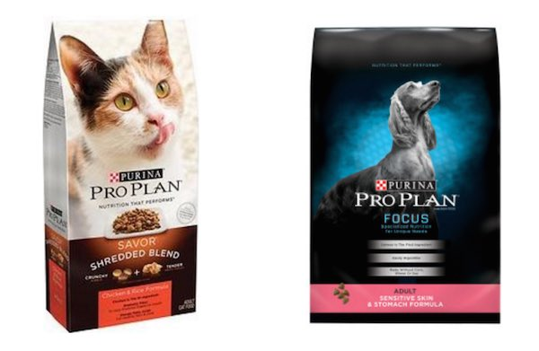 image regarding Purina Pro Plan Printable Coupons referred to as Purina skilled program cat foodstuff discount coupons -