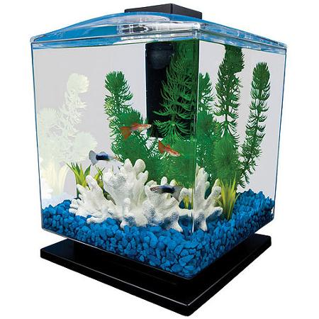Walmart tetra aquarium cube tank 1 5 gallon only for Kmart fish tank