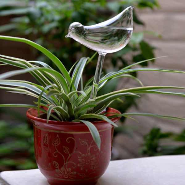 Glass Bird Style Automatic D</a>rip Watering System Potted Plants Irrigation Controller
