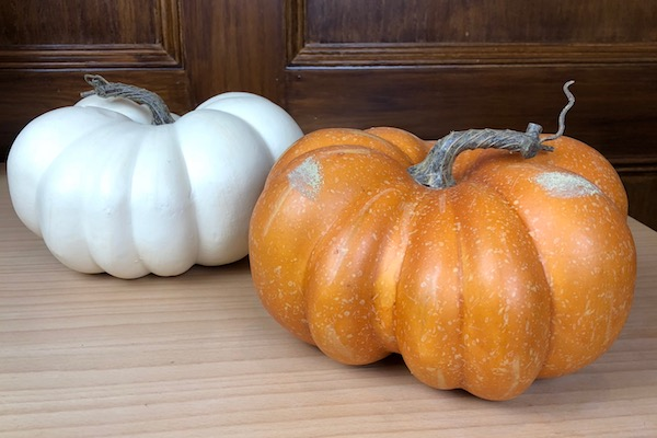 Pumpkins for Succulent Pumpkin Centerpiece