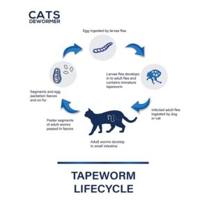 CatNDog Cat Wormers At Discount
