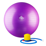 Black Mountain Products Professional Grade Stability Ball -$9.19(49% Off)