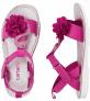 BOGO Free Shoes (Multiple Options) at Carter's