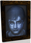 WOW! Stuff Collection Harry Potter Holopane 50 Mood Lamp $9.99 (REG $24.99)