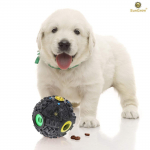 SunGrow Interactive Treat Dispenser Dog Toy $5.95 (REG $29.95)