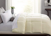 Blue Ridge Home Fashions Microfiber Down Alternative Comforter, Twin, Ivory $27.99 (REG $59.40)