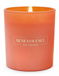 Benevolence LA Scented Candles Aromatherapy $18.95 (REG $65.00)