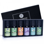 Lagunamoon Essential Oils Top 6 Gift Set Pure Essential Oils for Diffuser, $9.99 (REG $15.99)