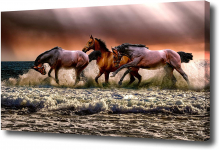 Omni Studio – Horses Galloping in Waves – Wildlife Canvas Wall Art $19.99 (REG $55.00)