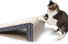 iPrimio Cat Scratcher Ramp – Foldable for Travel and Easy Storage$9.95 (REG $19.95)