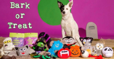 Spoil Your Pup With 50% Off Bark Dog Treats!