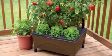 Earth Brown Resin Raised Garden Bed Only $19.98!
