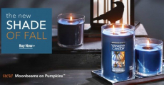B2G2 Free Yankee Candles With Printable Coupon!