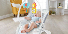 Fisher-Price Fun 'N Fold Bouncer ONLY $28.00! (Reg $42)