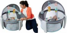 Fisher-Price On-The-Go Baby Dome Just $37.84 Shipped! Reg $70!!!