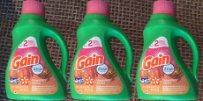8 Gain Products Only $12.00 @ Dollar General!