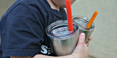 Housavvy Stainless Steel Sippy Cup with Lid & Straw Just $5.95/Each!