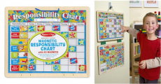 Amazon: Melissa & Doug Magnetic Responsibility Chart Only $12.99!