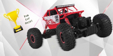 RC 4 Wheel Drive Toy Rally Car Just $37.75 Shipped!