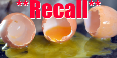 *RECALL* Over 200 Million Eggs Recalled Due to Possible Salmonella!