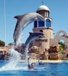 SeaWorld – 50% off Admission For Military and Guests!