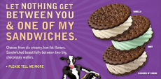 High Value $2 off Skinny Cow Ice Cream Coupon