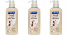 Soft Soap Hand Soap 8oz Plus Lotion Just $1.29/each At Target!