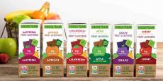 Stretch Island Fruit Leather Variety Pack 48-Count Only 19¢ /Each Shipped!