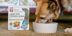The Honest Kitchen Grain-Free Dog Food Just $18.61 Shipped!