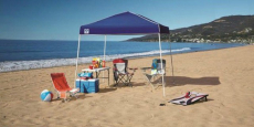 Z-Shade 10′ x 10′ Instant Canopy Only $35.99! (Reg $80)