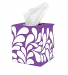 Angel Soft Facial Tissue Only $0.67 at Walmart!