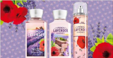 Bath & Body Works: NEW French Lavender & Honey Trio for $15 TODAY ONLY!