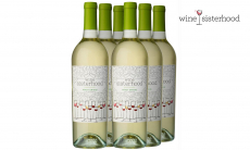 Wine Sisterhood Pinot Grigio Set $35.99 (REG $72.00)