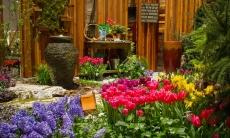 Chicago Flower & Garden Show 2019 – March 20–24, 2019