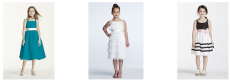 David's Bridal Bridesmaid, Flower Girl & Special Occasion Dresses $19.99 Shipped!