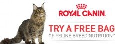 FREE Bag of Royal Canin Cat Food