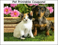 Pet Care Printable Coupon Round-up: Tidy Cats, Iams, Beneful and more!