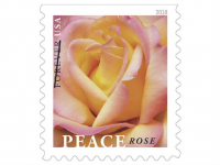 60 USPS Forever Stamps Only $26.75 Shipped!