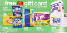 HOT Deal on Scott, Kleenex, and Viva Products at Target!!